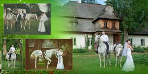 fotoksiążki fotoksiążka konie fotograf czestochowa przykładowy project fotoksiążki fotograf z czestochowy fotoksiążka konie czestochowa fotograf 11  jpg